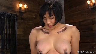 Petite Asian hairy pussy tormented